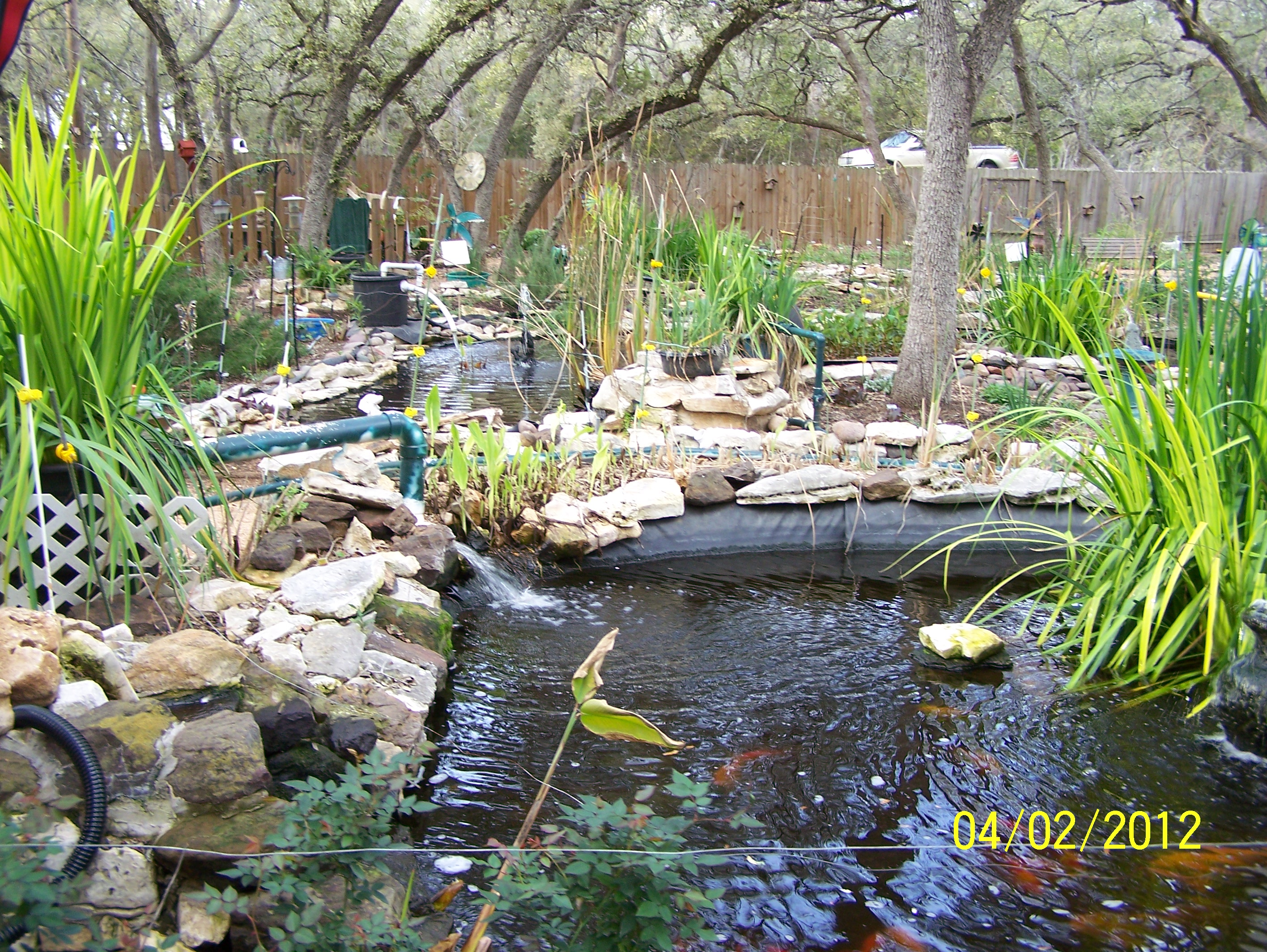 the five ponds and the story behind them u2026 life and day to day