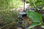 Pond Float