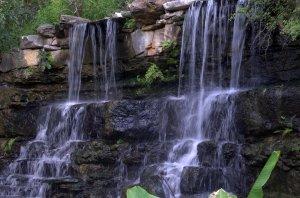 The Beautiful Falls in Zilker Gardens