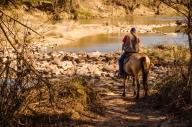 Horse at River