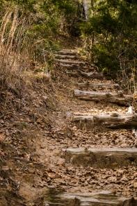 Man made steps