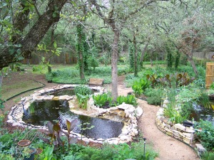 """The """"L"""" shaped pond with the bog on the right."""