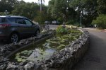 Willie Birge Memorial Pond