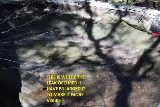 Leak in the liner