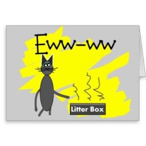 grey_cat_art_hilarious_stinky_litter_box_and_cat_card-p137169097415123941q0yk_400