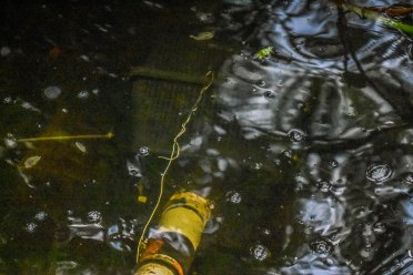 You can just make out the basket under the water with the foot valve in it.